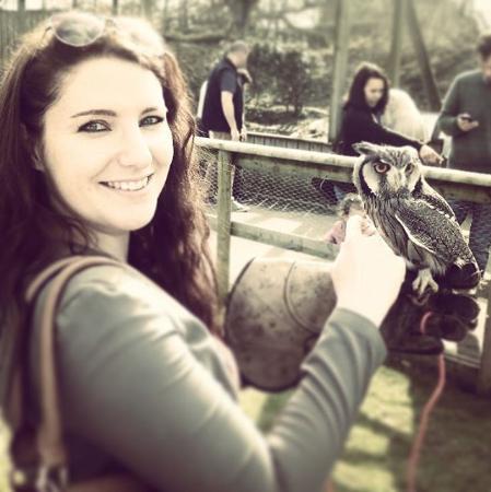 mimi-owl.png