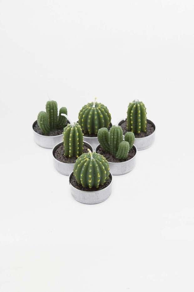 cactus-candles-home-interior.jpg