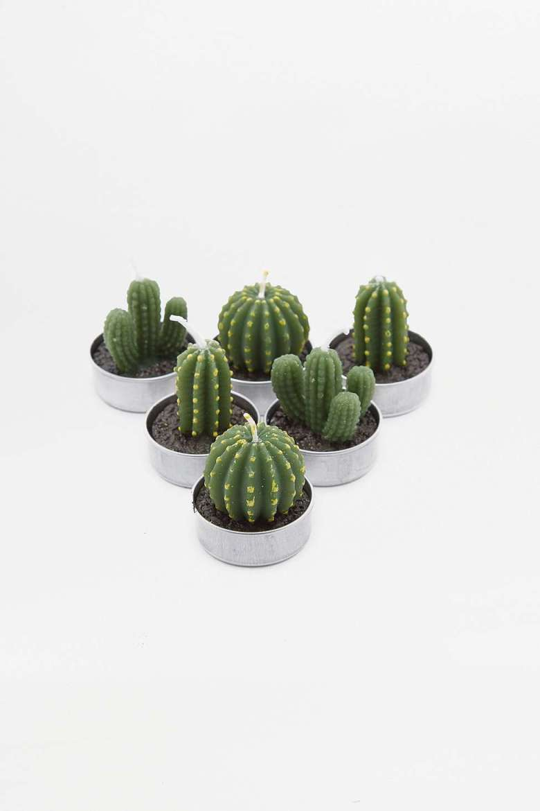 cactus-candles-home-interior.jpg